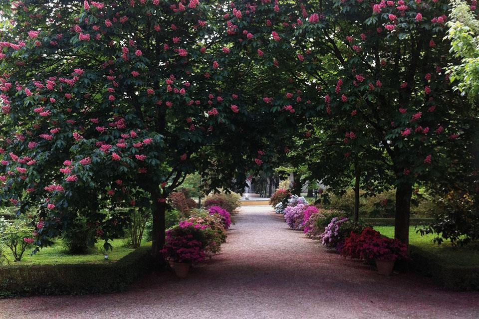 Risultati immagini per giardino dei semplici a firenze